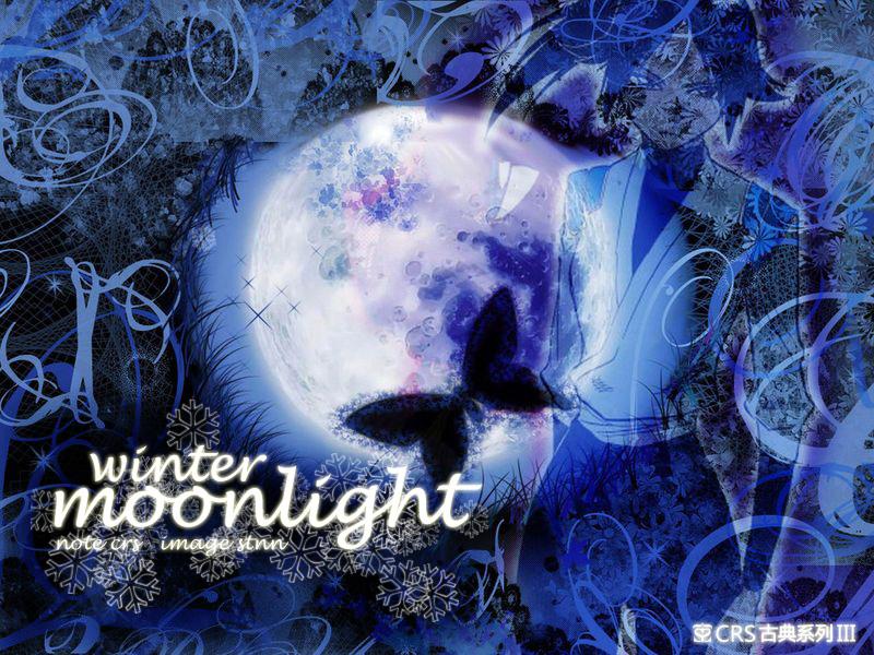 Moonlight Winter.jpg